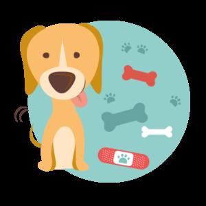 veterinaria-reparto-farmacia-mantova
